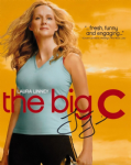 Laura Linney, 'The Big C',   10 x 8  genuine signed autograph 10394